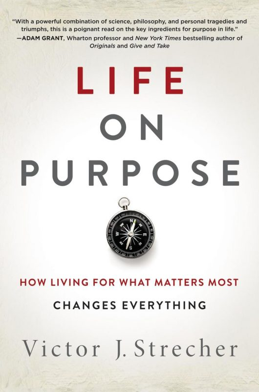 Life on Purpose by Vic Strecher